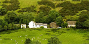 Wales Self Catering Farm House